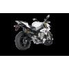Выхлопная система Akrapovic Racing Line (Carbon) для BMW S1000R 2014-2016   S-B10R2-RC